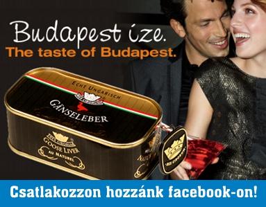 facebook felso banner